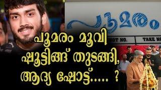 New Malayalam  Movie Poomaram 2016 |  Kalidas Jayaram  Movie