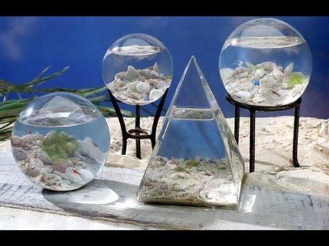 Брагогенератор в аквариуме брага