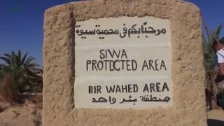 مصر العربية | سفاري بحرالرمال في واحة الغروب