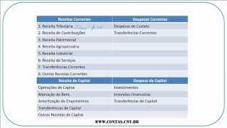 Contabilidade Pública - Lei 4.320/64 - Renato Chaves