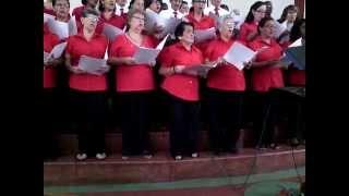 concha en el coro de la primera iglesia bautista de cali
