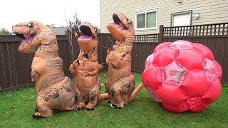 恐竜 赤ちゃん 大きな たまご から誕生!!! こうくんねみちゃん dinosaur baby Giant EGG