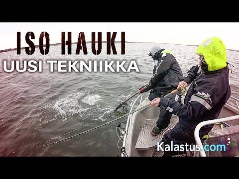 Näin kalastetaan & saadaan suurhaukea uusi tekniikka on selkävesien kalastus