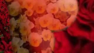 Bewafa zamane mein pyar dhoonDne wale  - Tina Sani