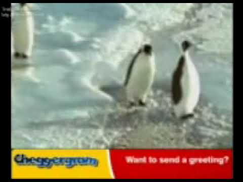 Very Funny Pinguins