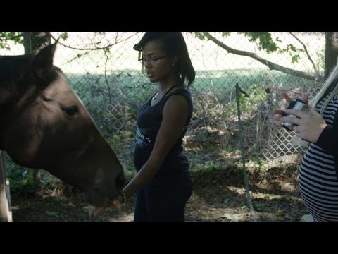 Xxx Mp4 Neglected Horses Show Animal Abuse Can Happen Anywhere 3gp Sex