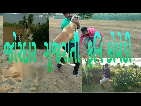 Xxx Mp4 જોરદાર ગૂજરાતી ફનિ કોમેડી Jord Ar Gujarati Funny Komedy Check Comedy Video 2018 3gp Sex