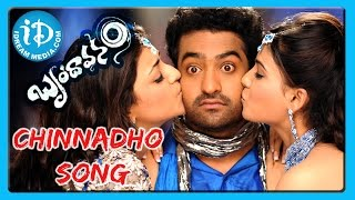 Chinnadho Song - Brindavanam Movie Songs - NTR Jr - Kajal Aggarwal - Samantha