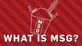 What Is MSG? - Brit Lab