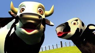Lola the Cow - The Farm