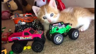 Learn Colors and Counting for Kids with Toy Car Educational Video Alphabet Kids and Toddlers!