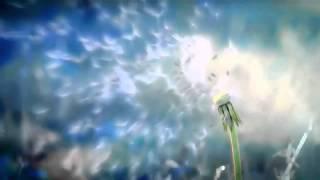 Dandelion Fly Live Wallpaper