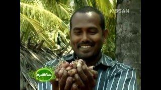 Success story of Sri. Mahendran, Young farmer at Muthalamada, Palakkad-608