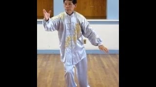 Zhantao Lin - Traditional Style Tai Chi Chuan 88 Movement Hand Form - Complete