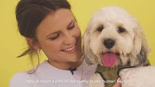 Dogs Trust 'Family Pawtrait'