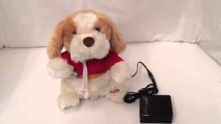 Switch adapted singing dog