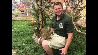 Animal Adventures with Jordan: Squirrel Monkey