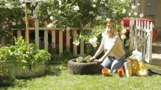 How to Plant Tomatoes in a Tire : Garden Space