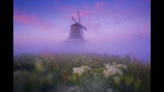 طواحين الهواء في هولندا فى مشهد ساحر بين الضباب