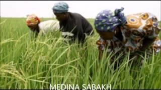 Jal Jali Medina Sabakh  Ngoyane Sénégal