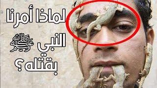 """هل تعلم لماذا أمرنا النبي ﷺ بقتل أبوبريص """"الوزغ""""؟ إجابة ستدهشك"""