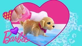 Barbie® et son chien heure du bain | DGY83