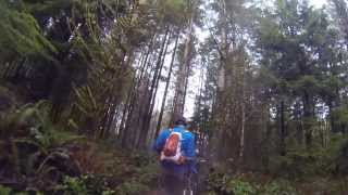 Stinger/Once Upon a Time/Gnomes trails --- Henry's Ridge Trail system