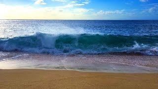 Ocean Waves Relaxation 10 Hours | Soothing Waves Crashing on Beach | White Noise for Sleep