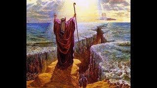 معجزة النبي موسى الثلاث العصا والماء والجراد