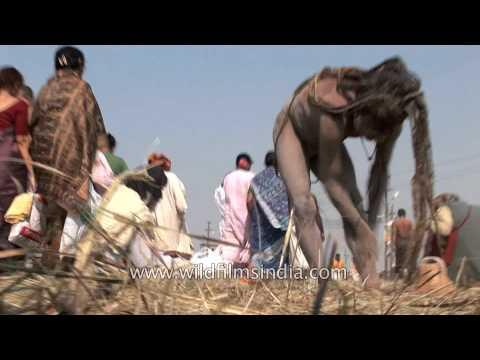 Western sadhus watch as Naga Sadhu applies human cremation ash on his body : Kumbh Mela, Allahabad