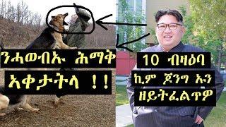 10 ዘይትፈልጥዎም ሓቅታት ብዛዕባ ኪም ጆንግ ኡን//10 Weird Facts About Kim Jong-un