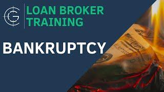 New Investors: Bankruptcy