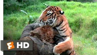 The Island of Dr. Moreau (5/12) Movie CLIP - Tiger vs. Tigerman (1977) HD