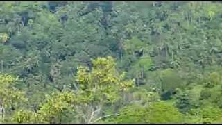 ZAmboanga trail ground-7up hill climb