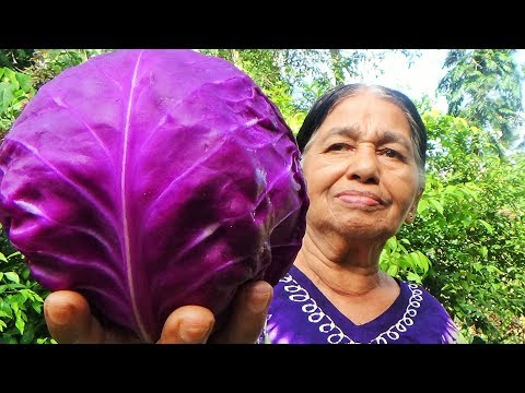 Village Foods - Cooking Purple Cabbage by my Mom / Village Life