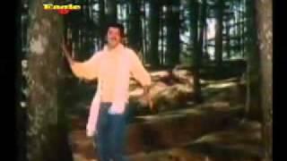 Pyar Kiya Hai Pyar Karenge Title song (1986) Shabbir Kumar and Kavita krishnamurthy