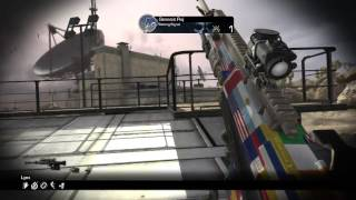 First shot and hitmarker in Genesis