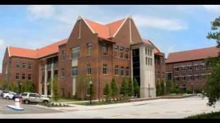 Univesity of Florida MBA Program