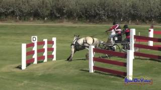 003M Leslie Berndl Advanced Single Pony Marathon Shady Oaks September 2016