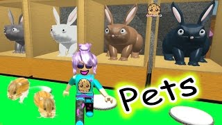 Hamsters In The House - Roblox Animal House Pets - Online Game Let
