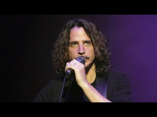 Celebs React To Chris Cornell's Sudden Death