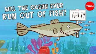Will the ocean ever run out of fish? - Ayana Elizabeth Johnson and Jennifer Jacquet