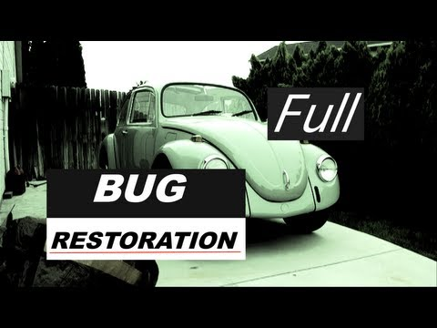 Bug Restoration Official Full Version
