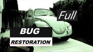 Bug Restoration (Official Full Version)