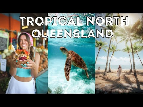 Is this the Best Road Trip in Queensland Cairns to Daintree Rainforest Travel Vlog
