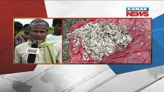 Illegal Acquisition of Swiss Gate In Kendrapara Creates Problem For Farmers