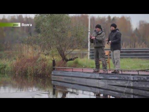 рыболовный интернет магазин на дмитровском шоссе