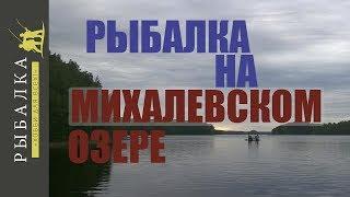 михалевское озеро можайский район рыбалка
