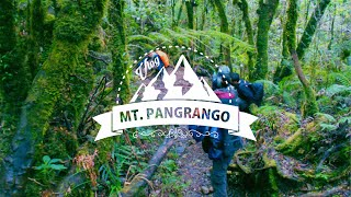 PENDAKIAN GUNUNG PANGRANGO || Travel Vlog