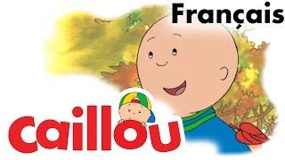 Caillou FRANÇAIS - Caillou râtelle les feuilles  (S01E30) | conte pour enfant